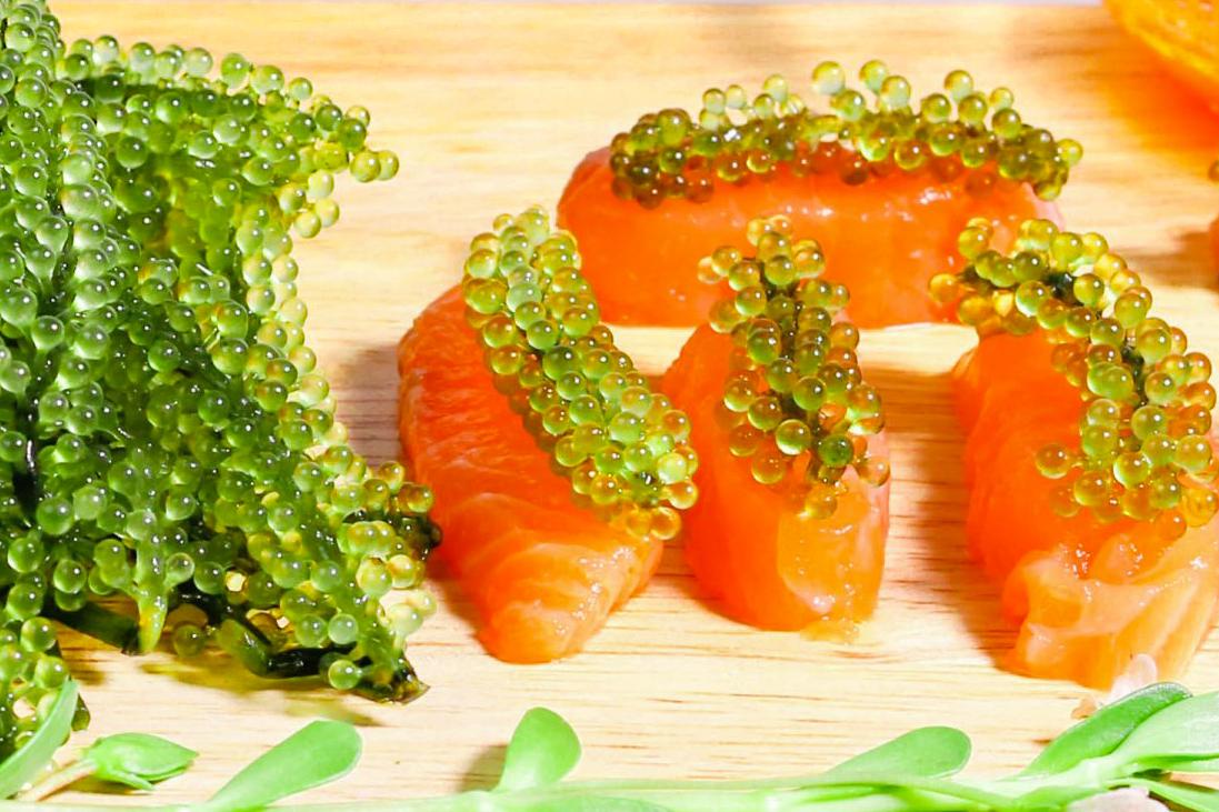 Cách làm salad rong nho cá hồi