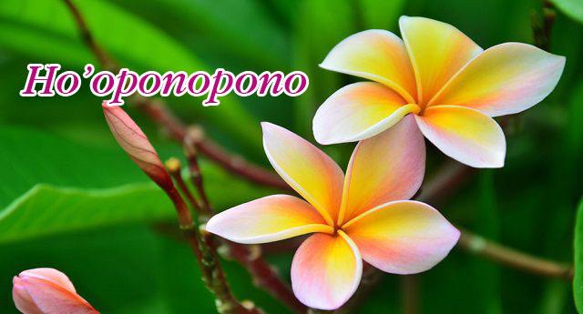 tìm hểu về phương pháp ho'oponopono